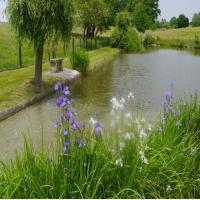 L'étang pour les amateurs de pêche